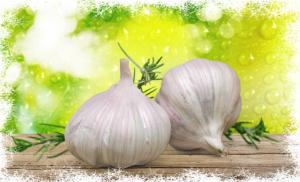 IQF Garlic